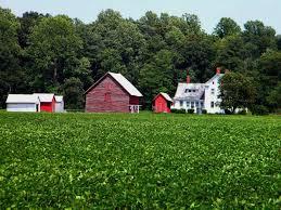 Country farm Delaware